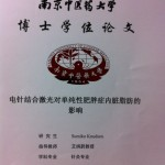 thesis in chinese